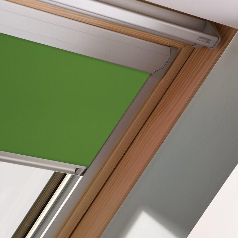 Green Parrott